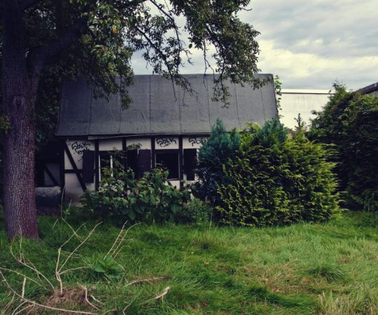 Mayer's House
